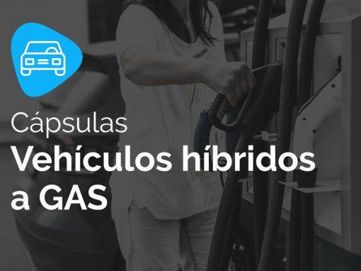Vehículos híbridos a GAS