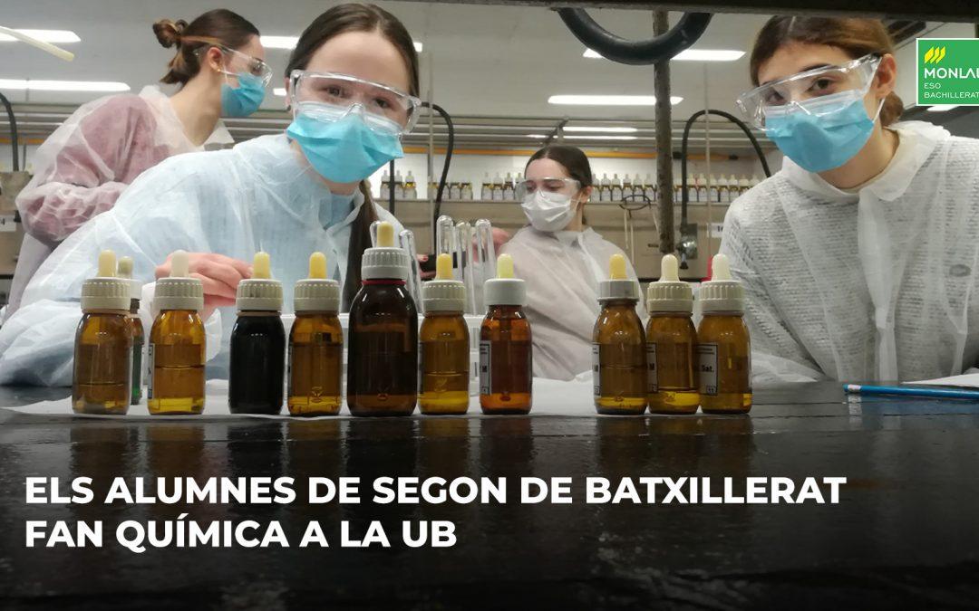 Fem Química a la UB